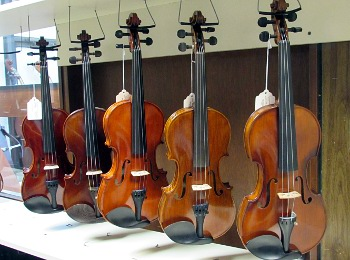 Stringed instruments await a musician.