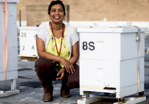 Dr. Joanne Rampersad-Ammons with bee hives during a summer fellowship to study issues concerning honey bee health. (photo UTRGV)