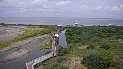 A cam at the SPI Birding & Nature Center overlooks the nature preserve. (Courtesy of South Padre Network)