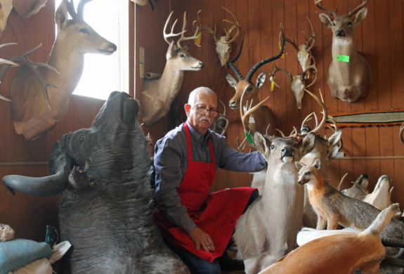Taxidermist Rene Escamilla with some of the trophies he has completed at his shop in Brownsville. (VBR)