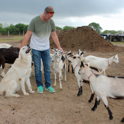 Adam Thompson socializes with some of his goats and one of the family dogs.