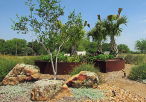 Andrew Heffner used native plants help this residential landscape design fit into the natural surroundings. (Courtesy)