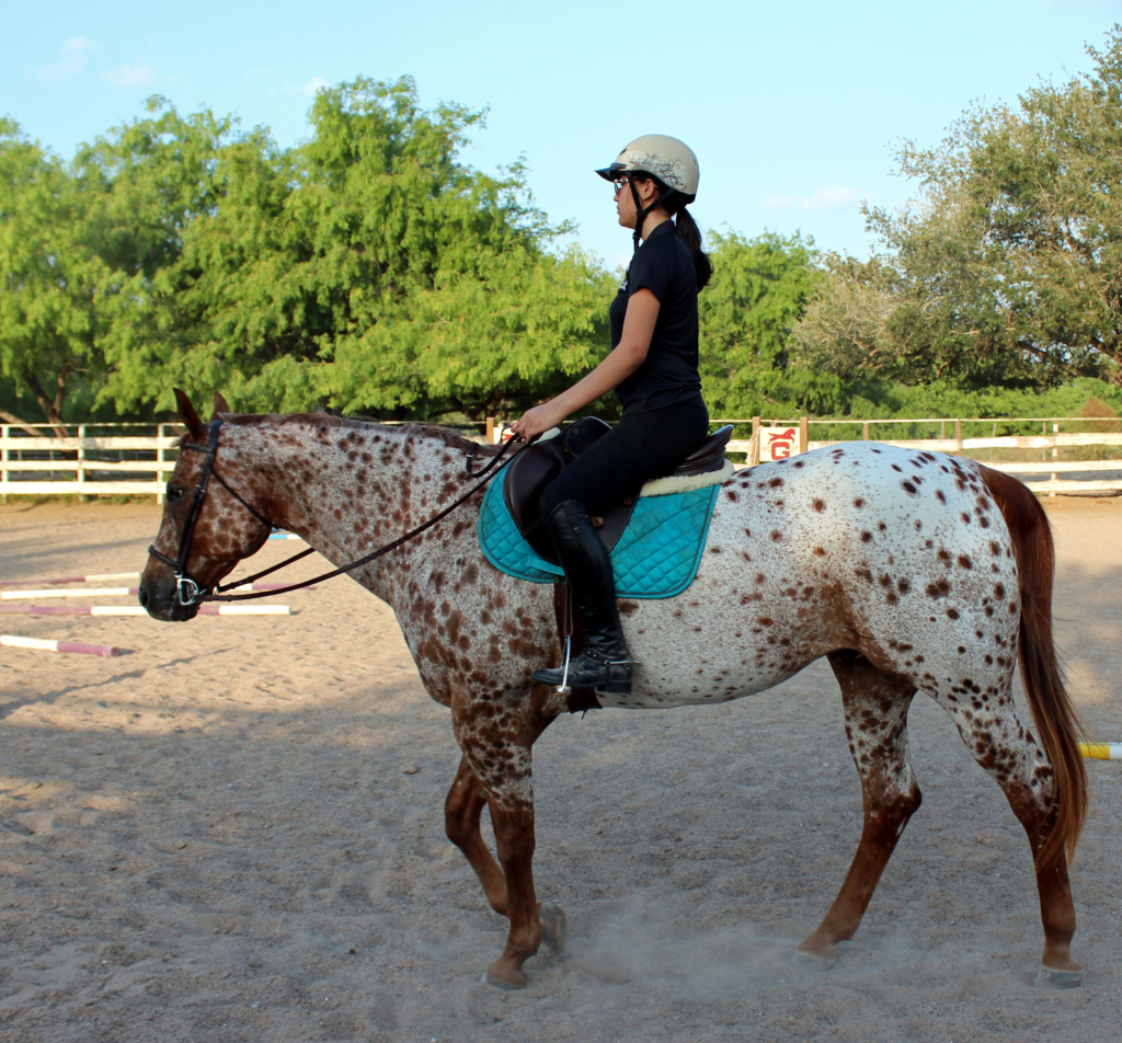 One of the older students rides her mount at JHK Equestrian Country Club. (VBR)
