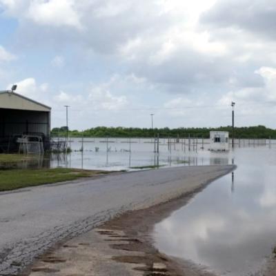 Rio Grande Valley Livestock Show flooding 2018