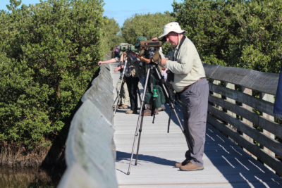 A group of visiting birders search the Laguna Madre for new sightings. (VBR)