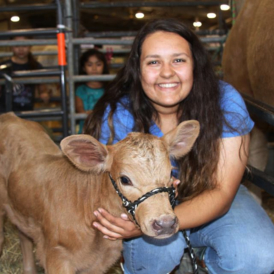 The Livestock Show provides area youth with the opportunity to compete for prizes in exhibiting their projects.