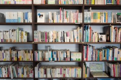 McAllen Library Amnesty Month
