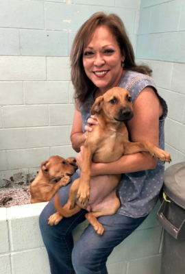 Lilia Castillo Jones found a new professional life as executive director of the Humane Society of Harlingen. (courtesy)