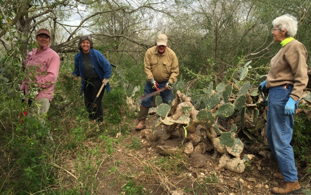 Kim Kirby, Pamela Gregory, Greg Storms, Louise Wilkinson work at Ramsey Park in Harlingen (photo RGV Chapter Texas Master Naturalist)