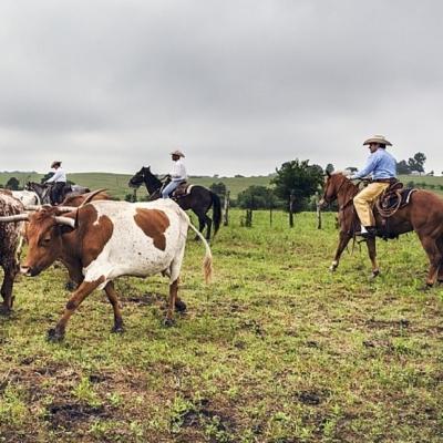 TSCRA ranch gathering