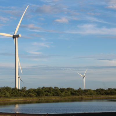 A turbine from a wind farm near Bayview.