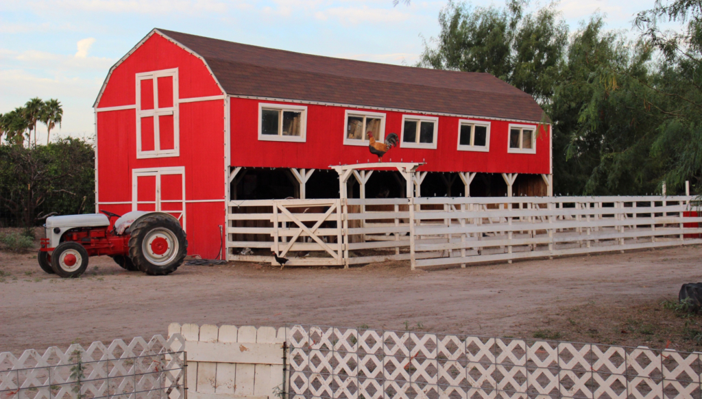 The infamous red barn of Maddie's Pumpkin Patch.
