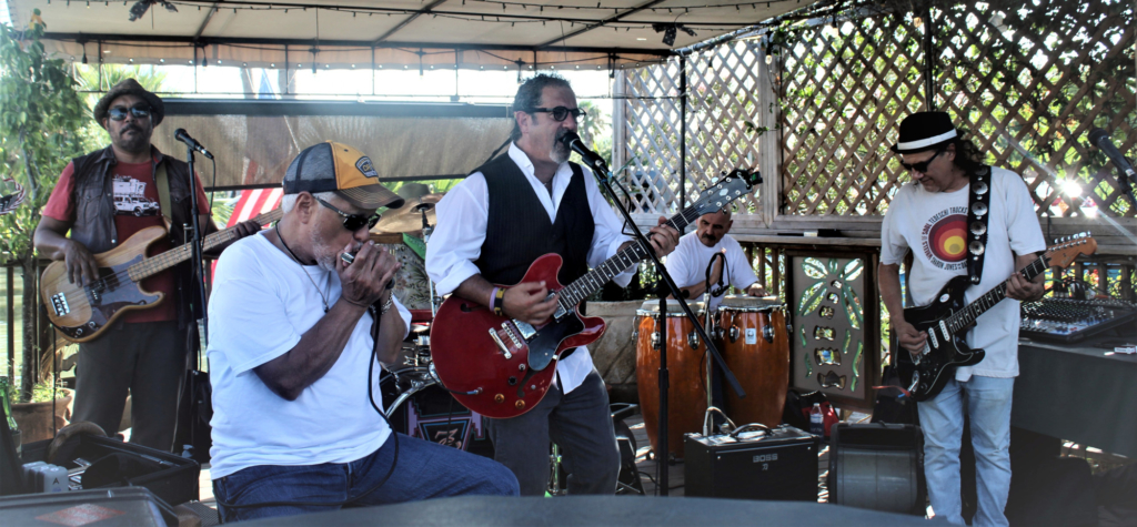 Los Bluzanos has been playing every Sunday on the deck of Cobbleheads for the last 10 years.