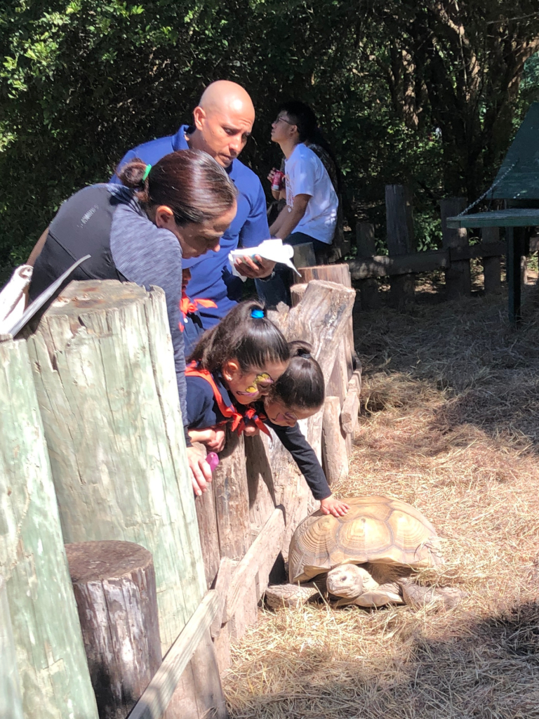 A family views and pets Spike the tortoise at the National Butterfly Center.
