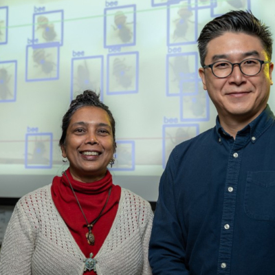 Joanne Rampersad-Ammons and Dongchul Kim are collaborating across disciplines to study the honeybee population in South Texas. (photo Paul Chouy, UTRGV)