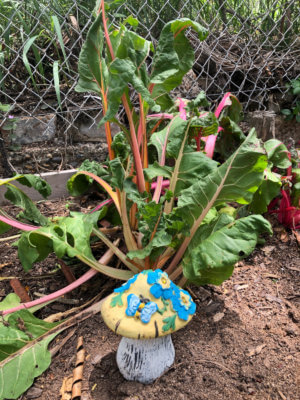Therapeutic gardening is featured at Sprouts Sensory Garden.